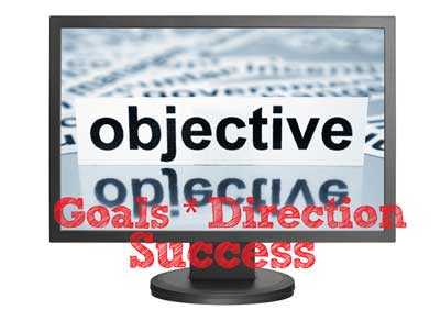 business description goals direction success